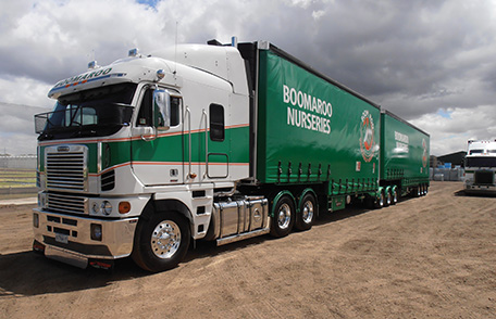 Boomaroo Nurseries Supply Partners